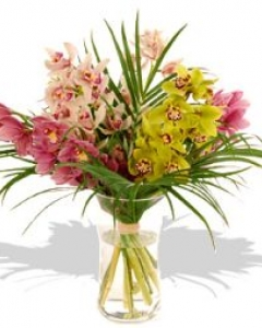 Cymbidiums in vase