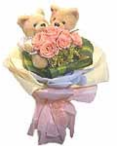 Roses and Twin Teddy