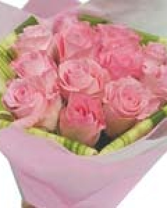 Exclusive Pink Roses