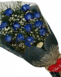 12 Blue Rose bouquet w/pillow