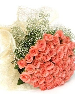 36_Pink_Roses_Bunch